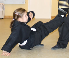 Childrens Kung Fu Class with Chris Davies, 6 Degree, Midlothian, Scotland